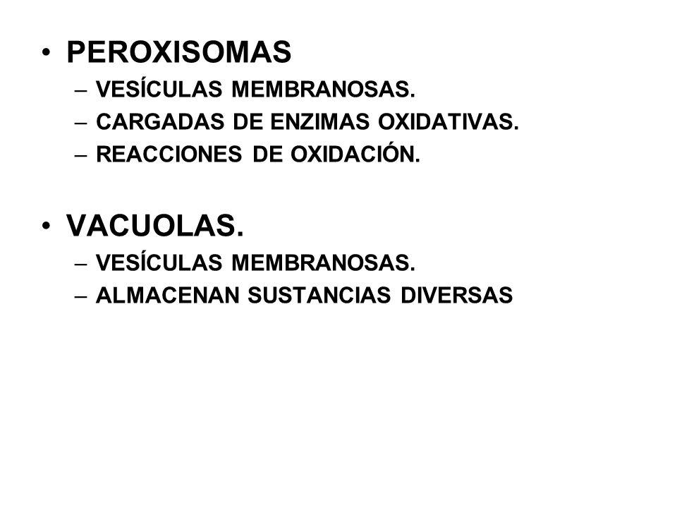 PEROXISOMAS VACUOLAS. VESÍCULAS MEMBRANOSAS.