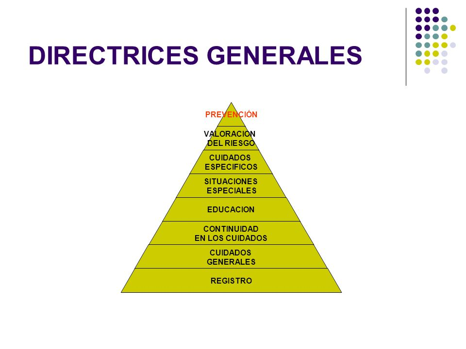 DIRECTRICES GENERALES