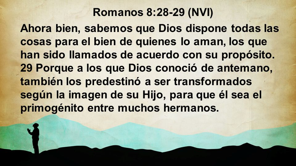 Romanos 8:28-29 (NVI)