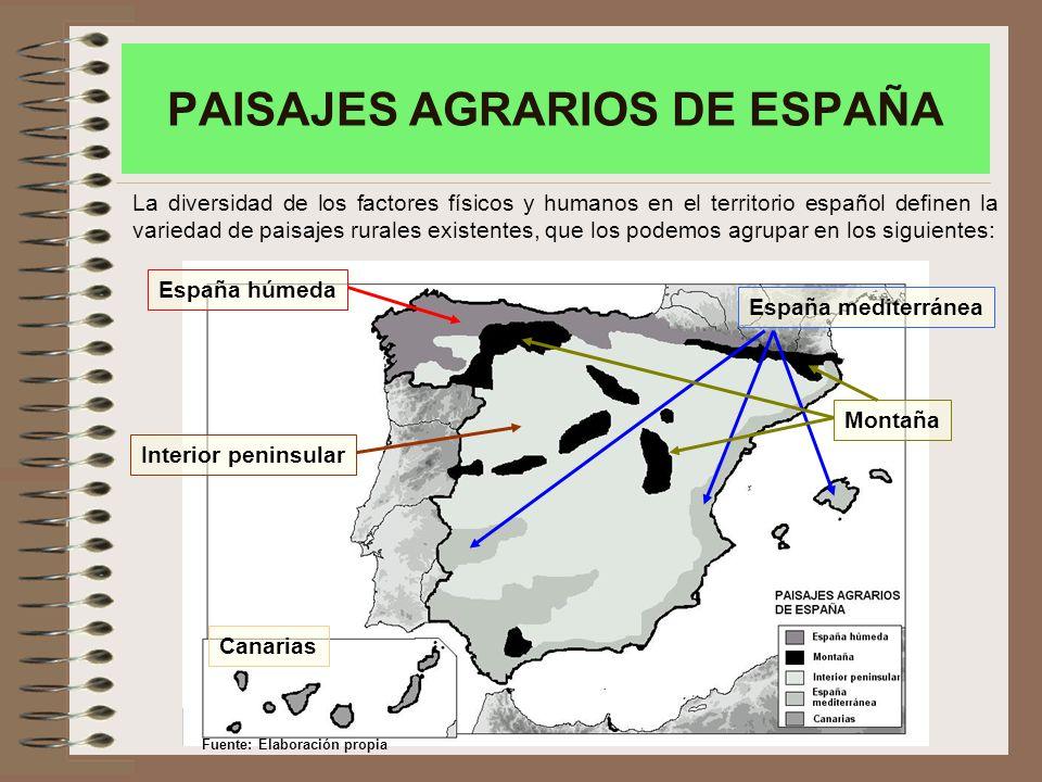 PAISAJES AGRARIOS DE ESPAÑA