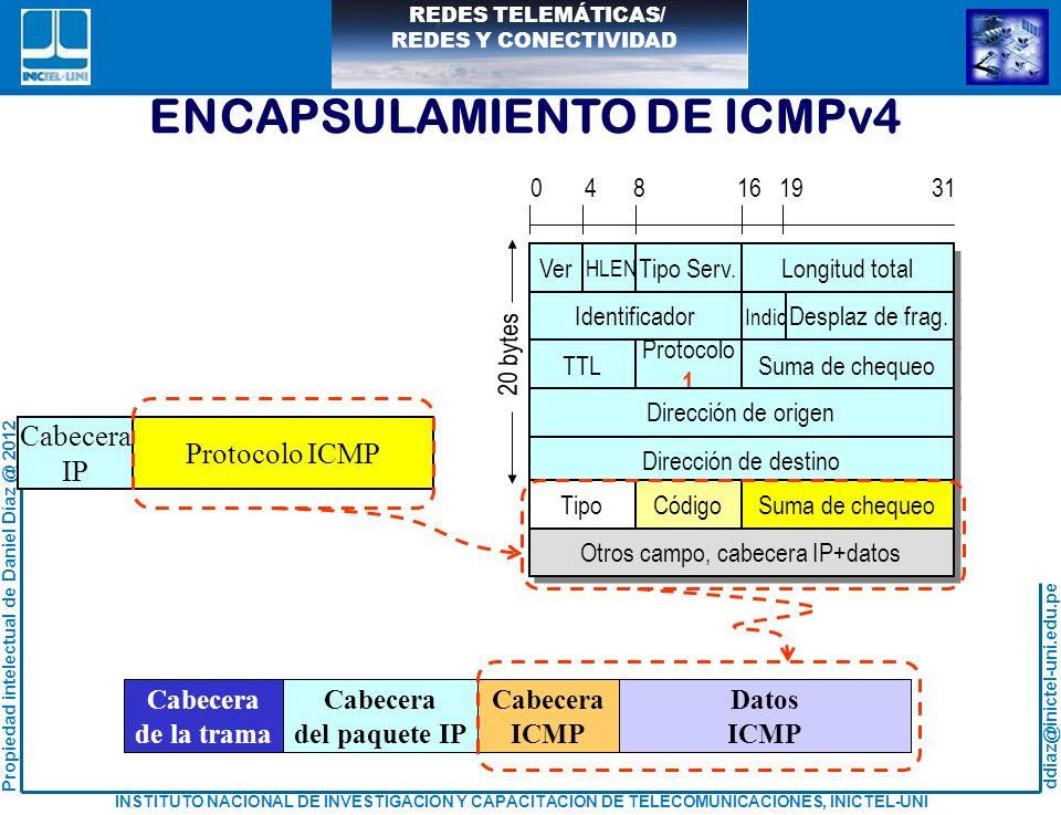 Otros campo, cabecera IP+datos