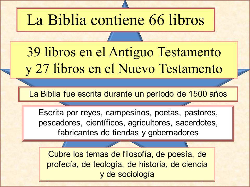 Matrimonio Biblia Nuevo Testamento : La biblia ppt descargar