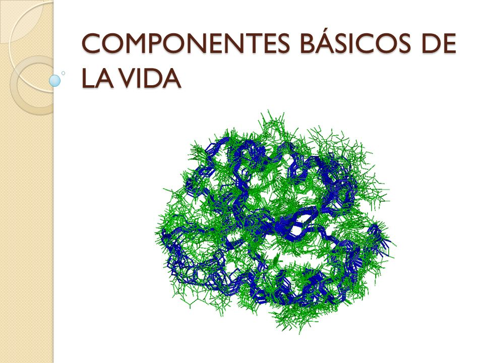 COMPONENTES BÁSICOS DE LA VIDA