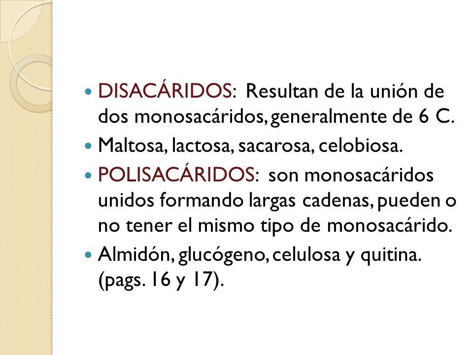 DISACÁRIDOS: Resultan de la unión de dos monosacáridos, generalmente de 6 C.