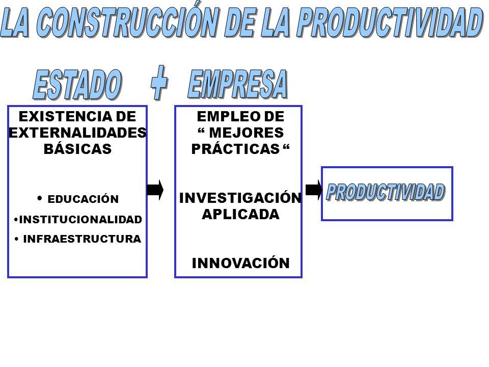 LA CONSTRUCCIÓN DE LA PRODUCTIVIDAD