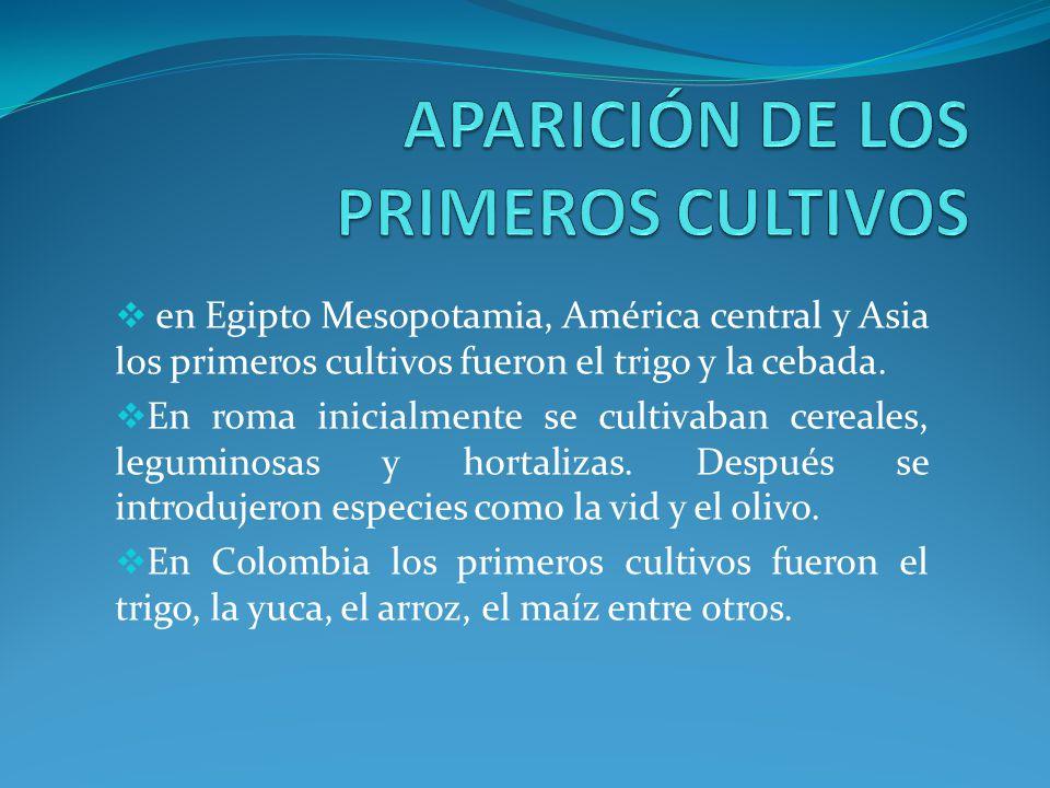 APARICIÓN DE LOS PRIMEROS CULTIVOS