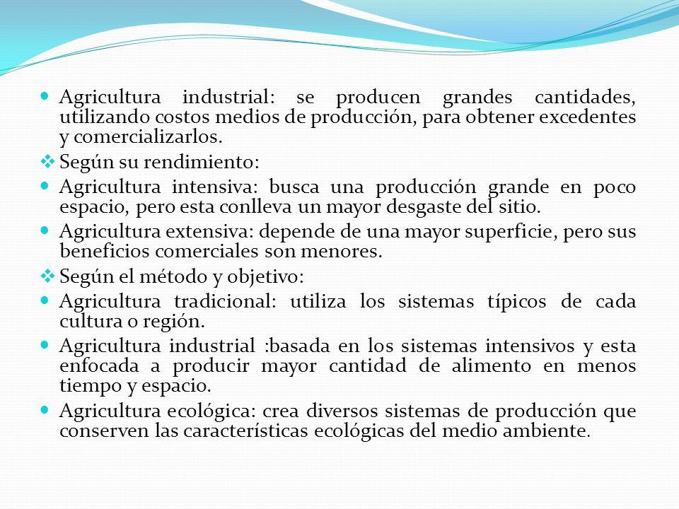 Agricultura industrial: se producen grandes cantidades, utilizando costos medios de producción, para obtener excedentes y comercializarlos.