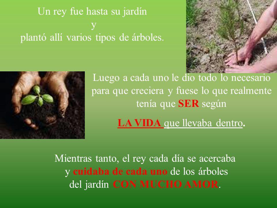 un rey fue hasta su jardn y plant all varios tipos de rboles