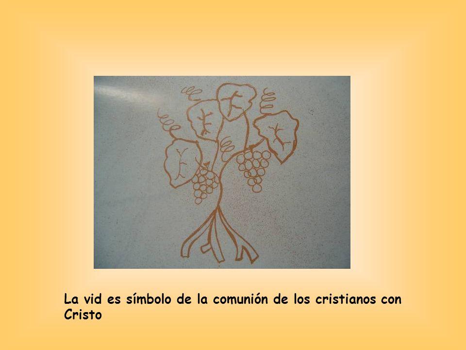 La vid es símbolo de la comunión de los cristianos con Cristo