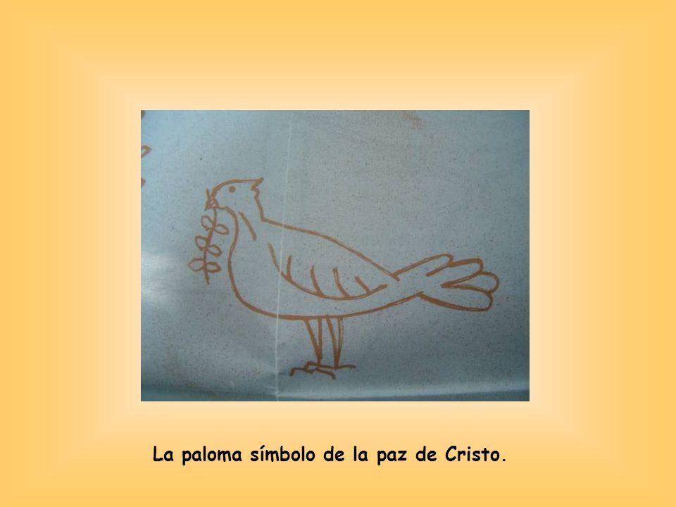 La paloma símbolo de la paz de Cristo.