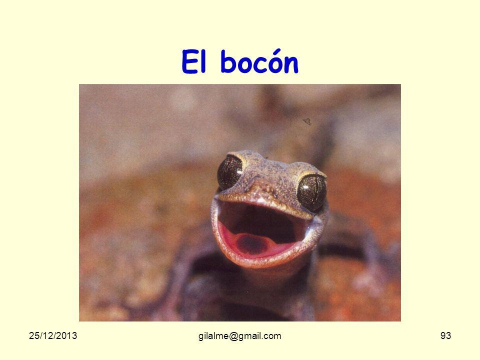 El bocón Qui cela peut-il bien être 23/03/2017 gilalme@gmail.com
