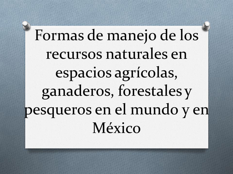 Formas de manejo de los recursos naturales en espacios agrícolas, ganaderos, forestales y pesqueros en el mundo y en México