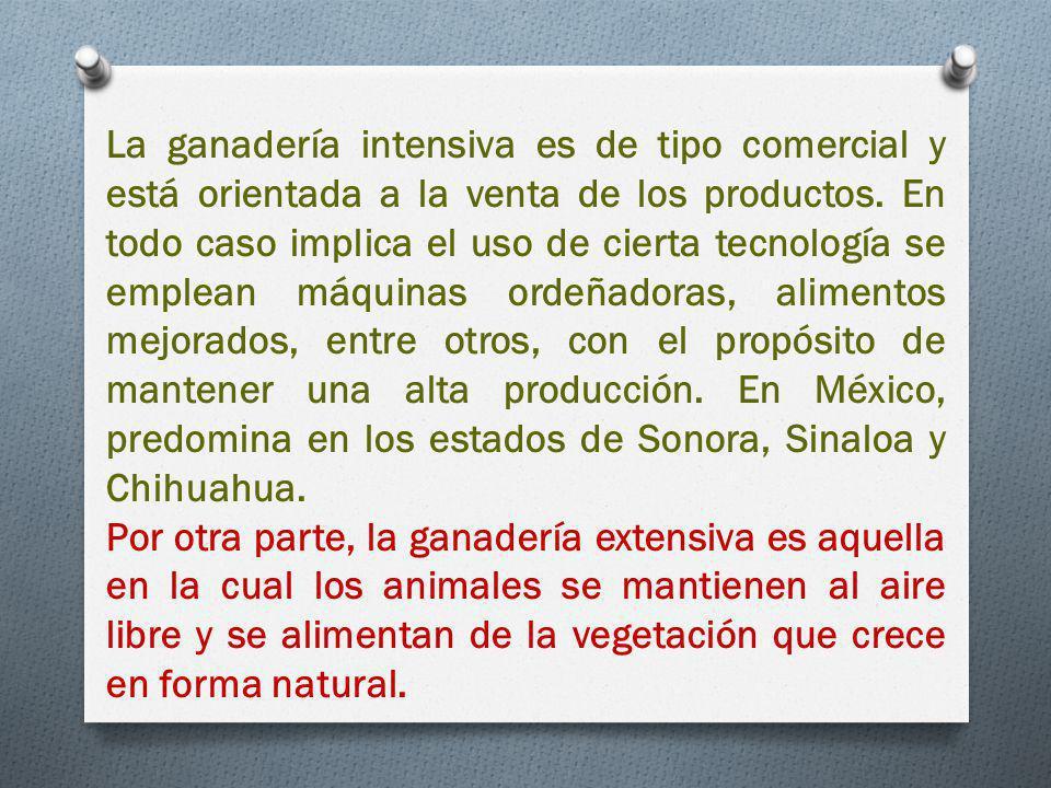 La ganadería intensiva es de tipo comercial y está orientada a la venta de los productos. En todo caso implica el uso de cierta tecnología se emplean máquinas ordeñadoras, alimentos mejorados, entre otros, con el propósito de mantener una alta producción. En México, predomina en los estados de Sonora, Sinaloa y Chihuahua.