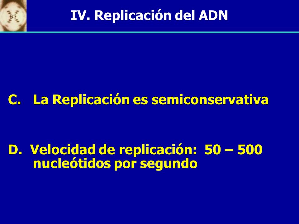 IV. Replicación del ADN La Replicación es semiconservativa.