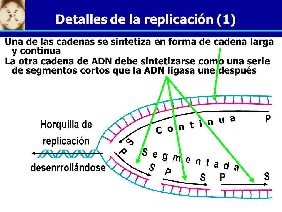 Detalles de la replicación (1)