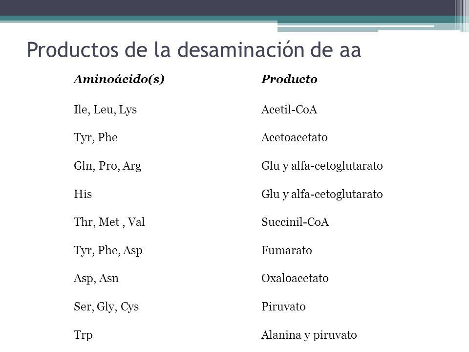 Productos de la desaminación de aa