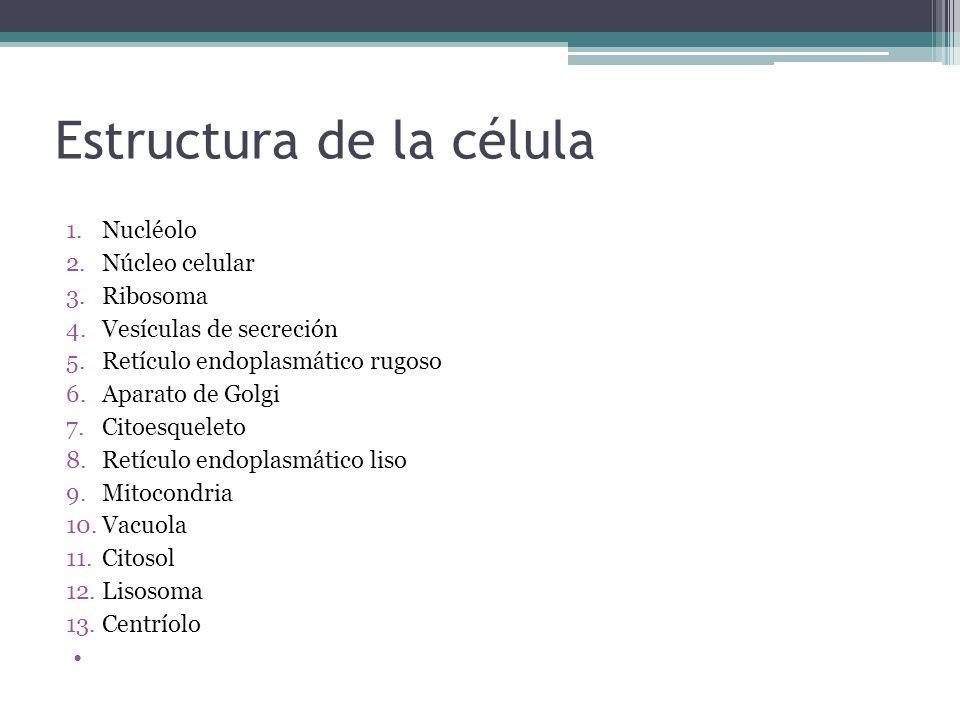 Estructura de la célula