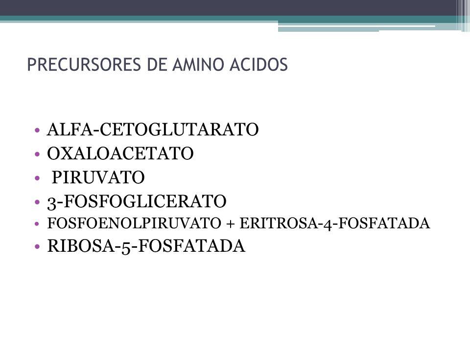 PRECURSORES DE AMINO ACIDOS