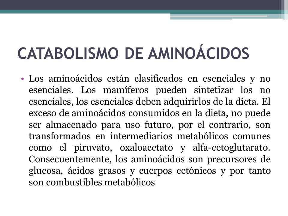 CATABOLISMO DE AMINOÁCIDOS