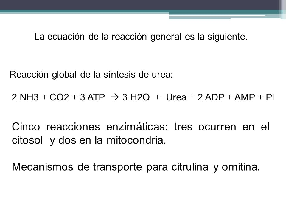 2 NH3 + CO2 + 3 ATP  3 H2O + Urea + 2 ADP + AMP + Pi