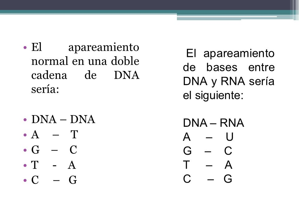 El apareamiento normal en una doble cadena de DNA sería:
