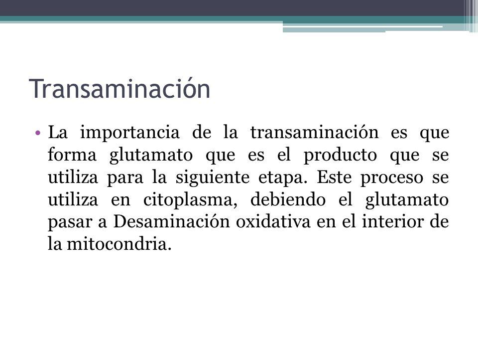 Transaminación