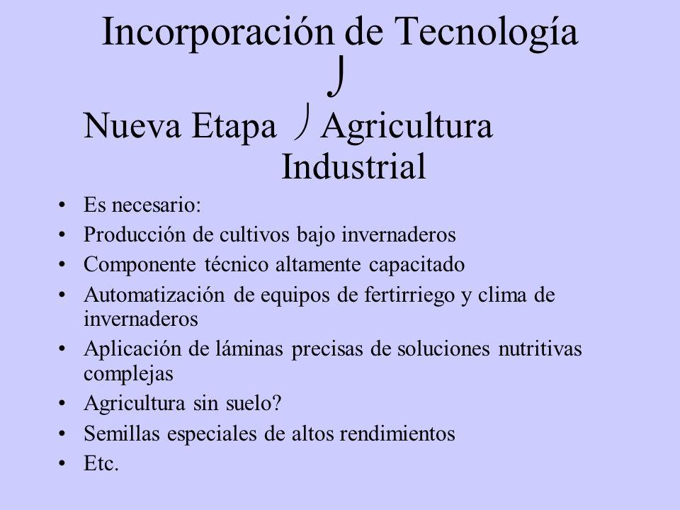 Incorporación de Tecnología 