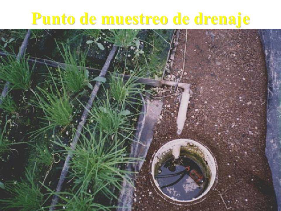 Punto de muestreo de drenaje