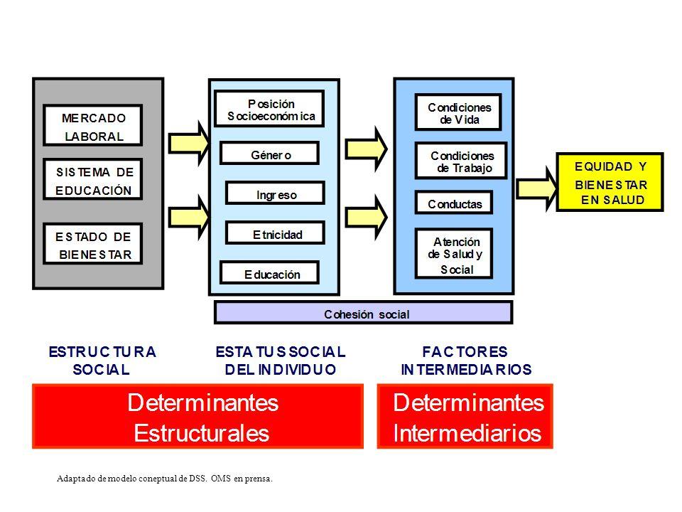 Adaptado de modelo coneptual de DSS. OMS en prensa.