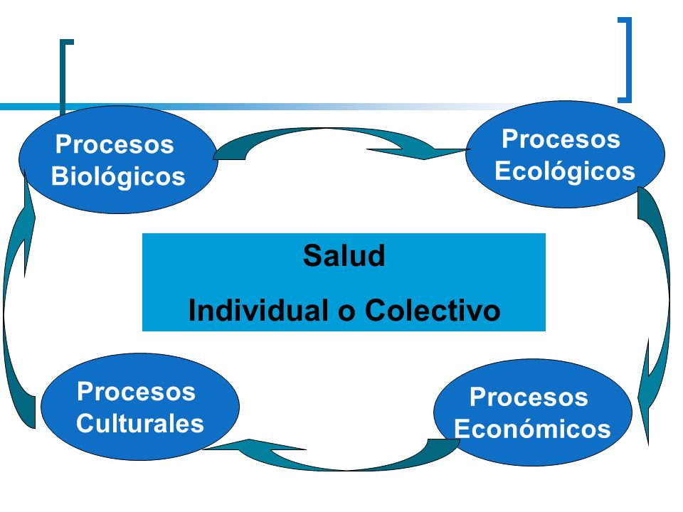 Individual o Colectivo
