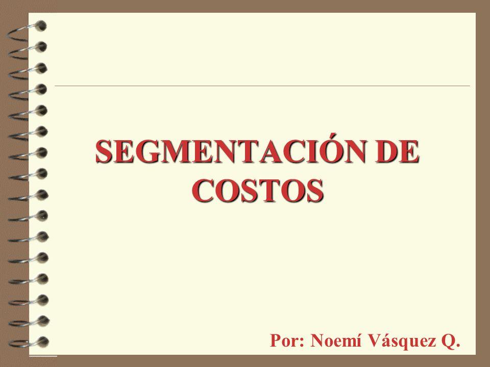 SEGMENTACIÓN DE COSTOS