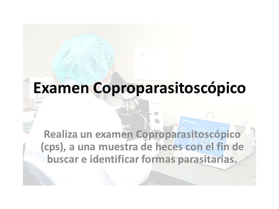 Examen Coproparasitoscópico