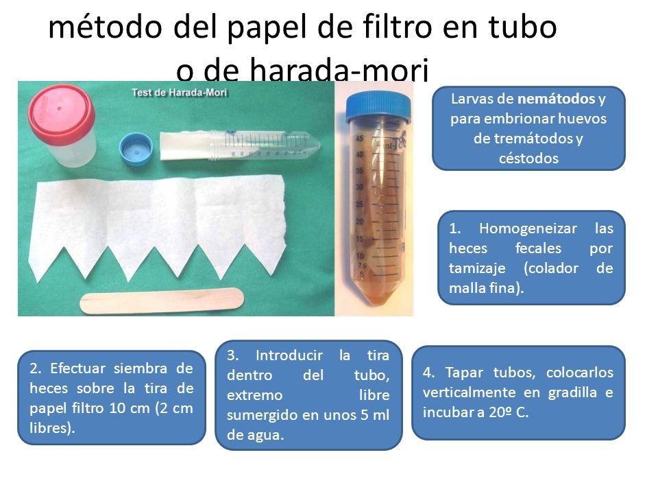 método del papel de filtro en tubo o de harada-mori
