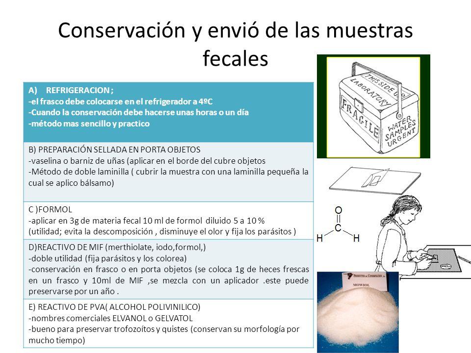 Conservación y envió de las muestras fecales