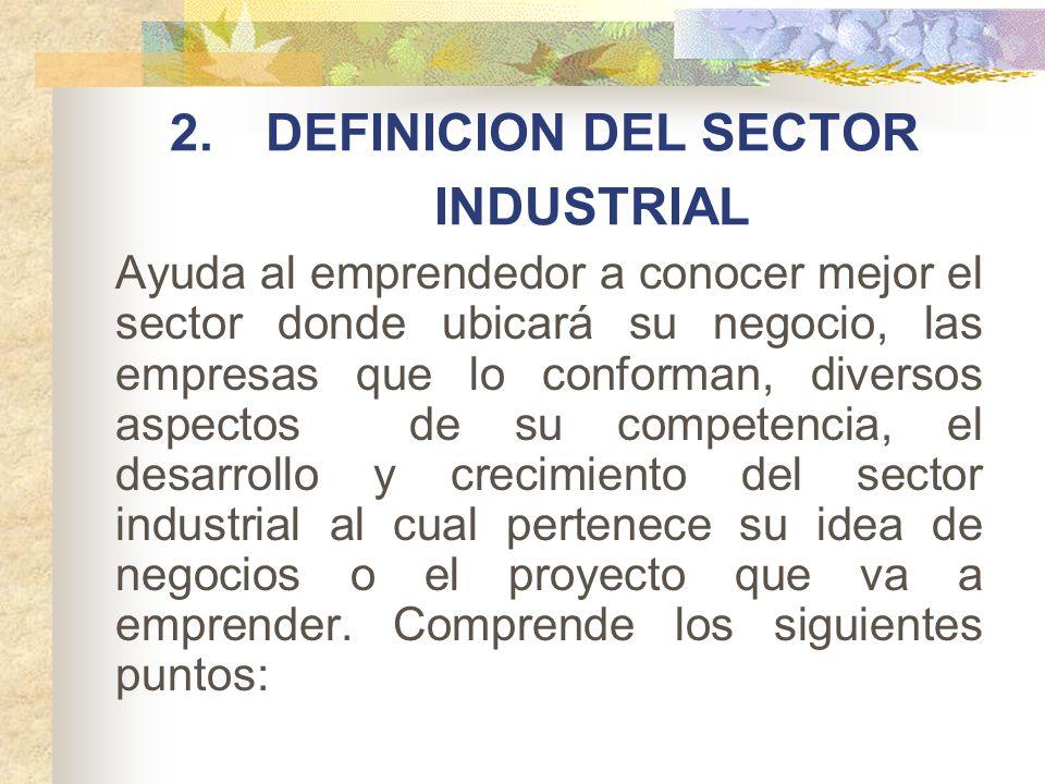 DEFINICION DEL SECTOR INDUSTRIAL