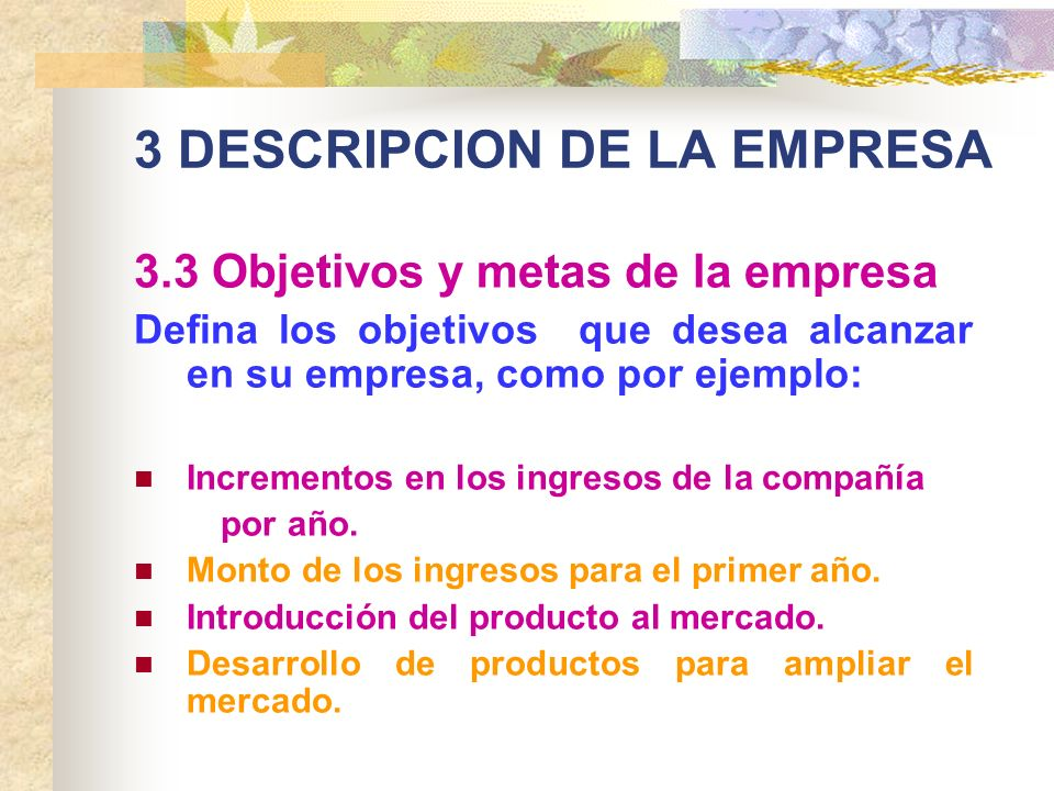 3 DESCRIPCION DE LA EMPRESA