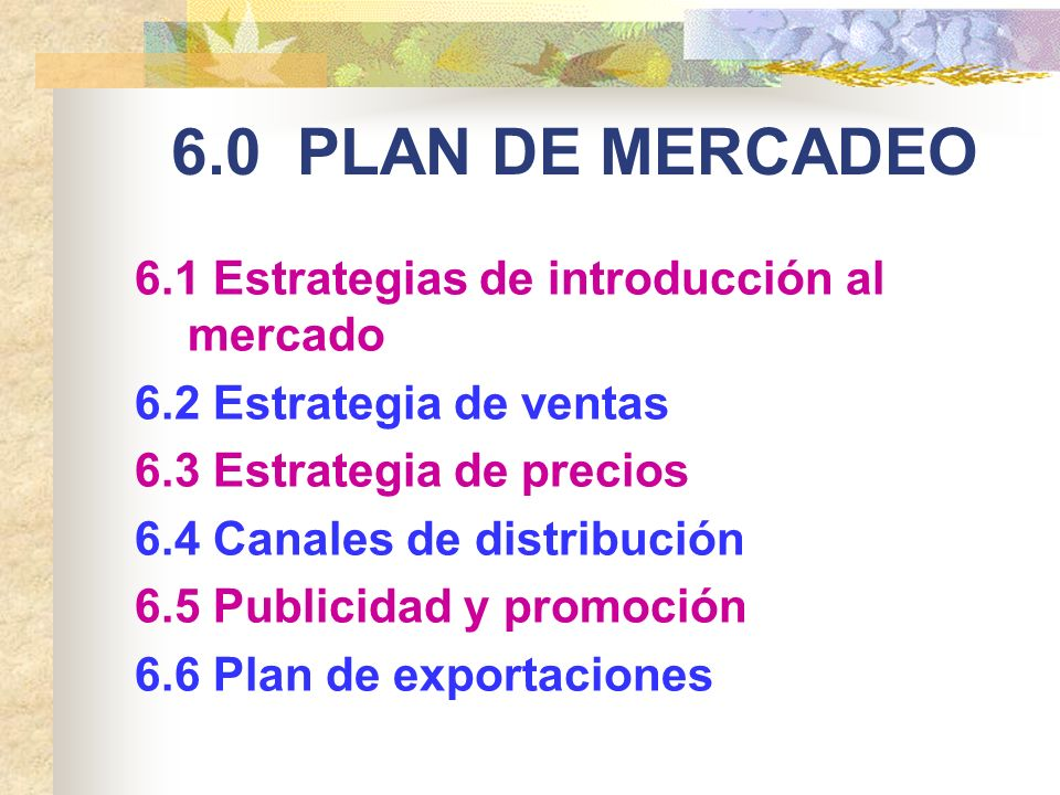 6.0 PLAN DE MERCADEO 6.1 Estrategias de introducción al mercado