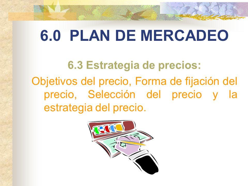 6.3 Estrategia de precios: