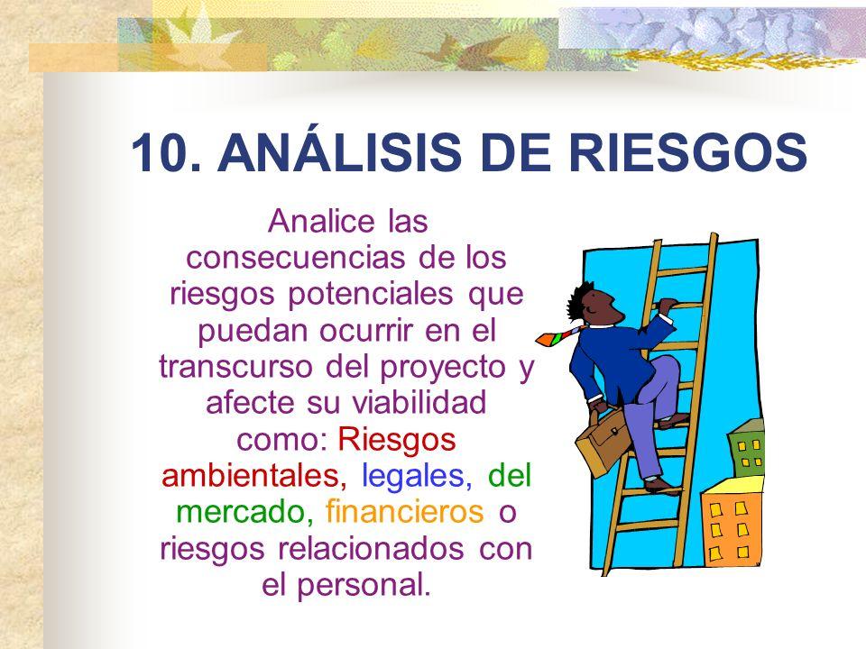10. ANÁLISIS DE RIESGOS
