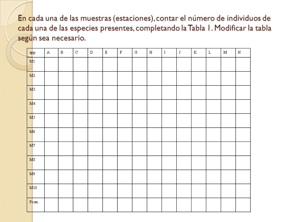 En cada una de las muestras (estaciones), contar el número de individuos de cada una de las especies presentes, completando la Tabla 1.