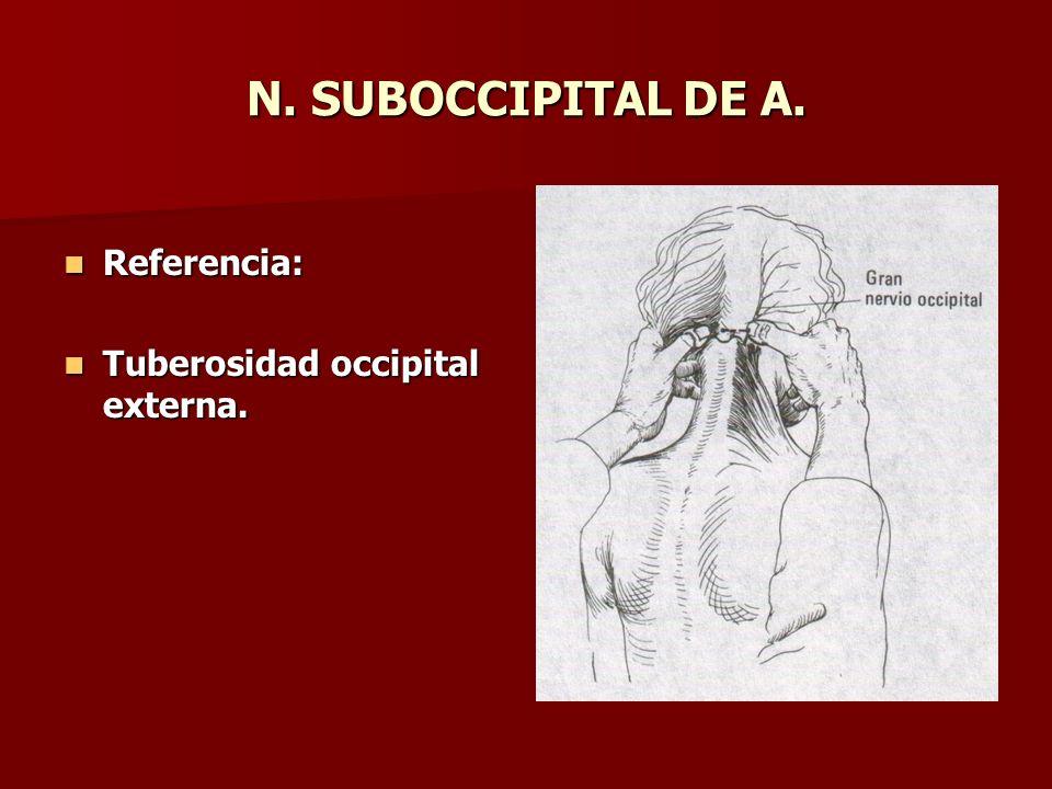 N. SUBOCCIPITAL DE A. Referencia: Tuberosidad occipital externa.