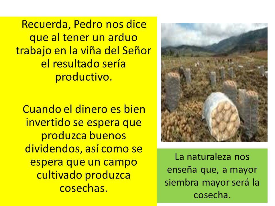 La naturaleza nos enseña que, a mayor siembra mayor será la cosecha.