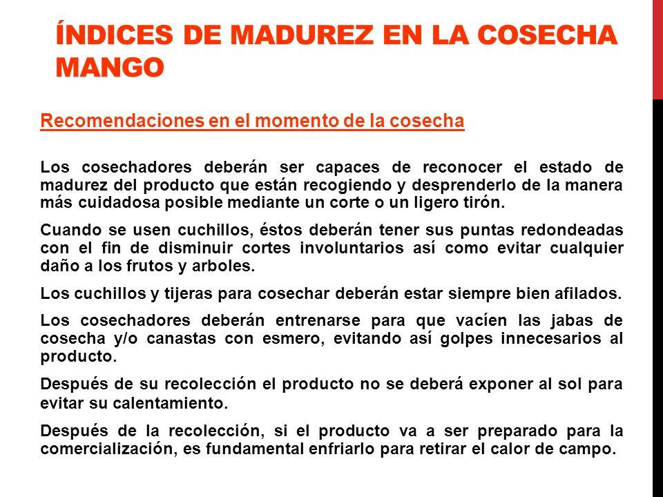 ÍNDICES DE MADUREZ EN LA COSECHA MANGO