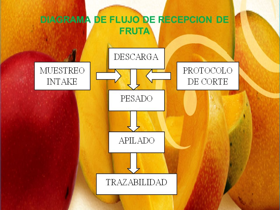 DIAGRAMA DE FLUJO DE RECEPCION DE FRUTA