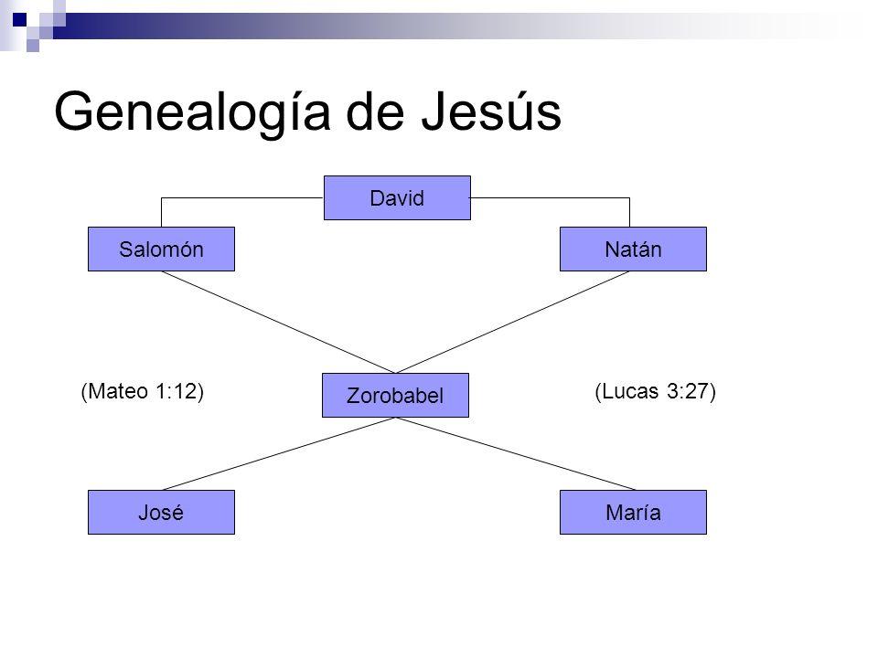 Genealogía de Jesús David Salomón Natán (Mateo 1:12) Zorobabel