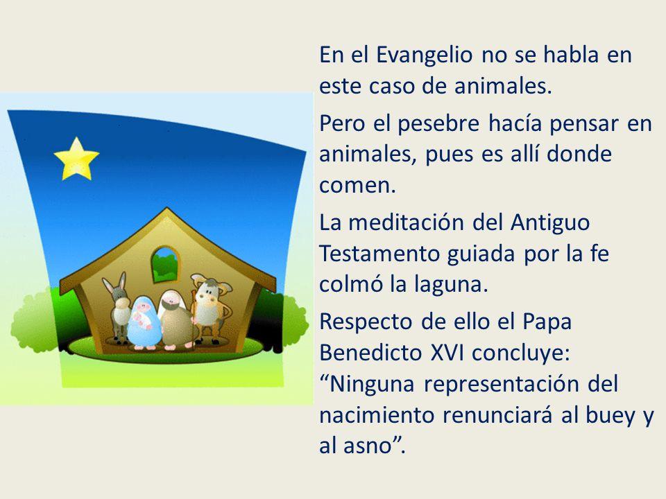 En el Evangelio no se habla en este caso de animales