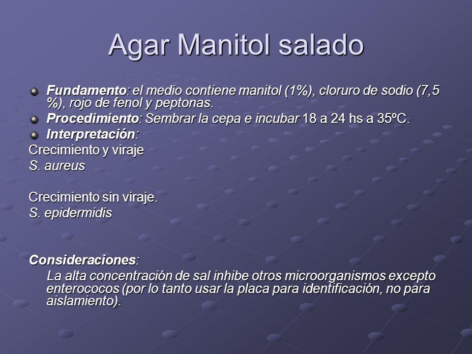 Agar Manitol salado Fundamento: el medio contiene manitol (1%), cloruro de sodio (7,5 %), rojo de fenol y peptonas.