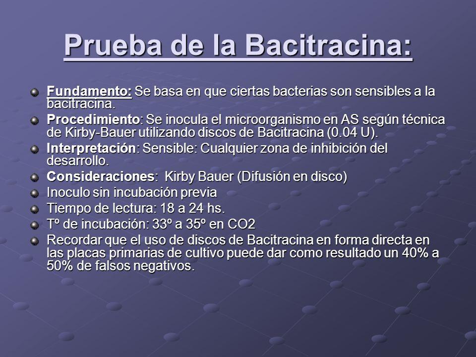 Prueba de la Bacitracina: