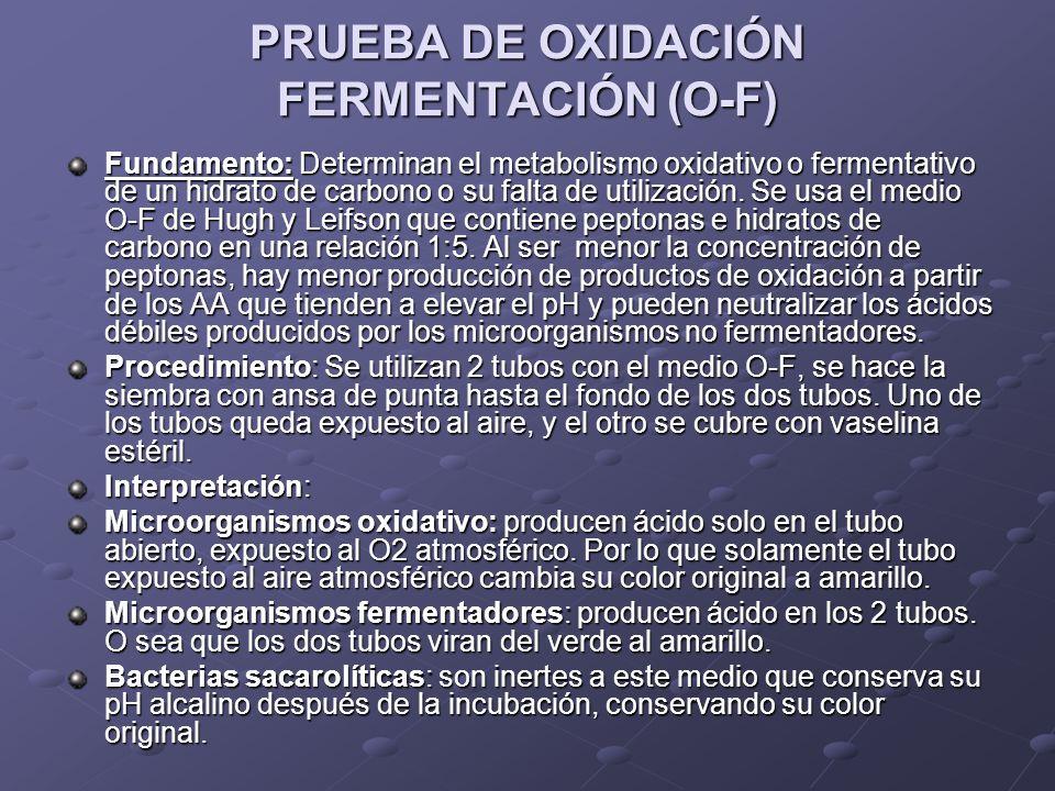 PRUEBA DE OXIDACIÓN FERMENTACIÓN (O-F)
