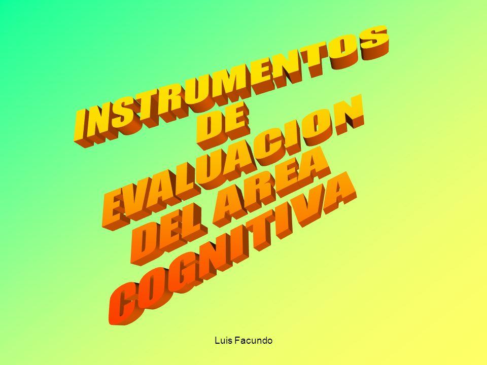 INSTRUMENTOS DE EVALUACION DEL AREA COGNITIVA Luis Facundo